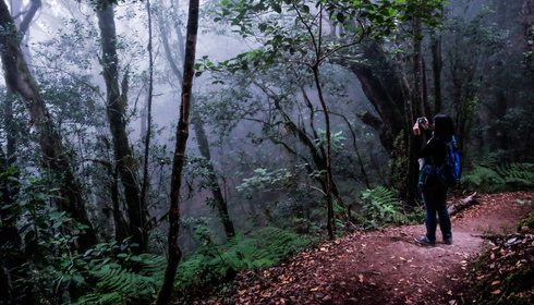 Un recorrido por la mitología de La Gomera   Guía Repsol
