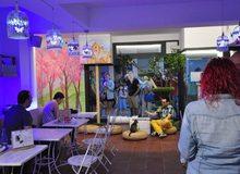 Espai DeGats - Cat Café