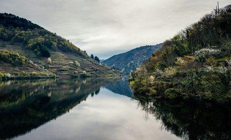 Rio Miño desde el agua. Foto: Clara Vilar