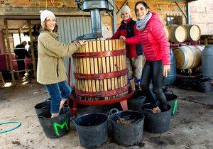 La Rioja y su vino supurao | Guía Repsol