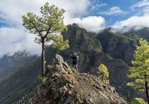 El Bosque de los Tilos (La Palma)   Guía Repsol