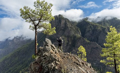El Bosque de los Tilos (La Palma) | Guía Repsol
