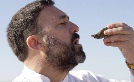 Cómo comer una ostra | Guía Repsol