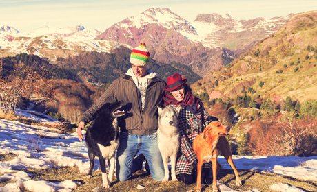 Cómo aventurarte en la montaña con tu mascota | Guía Repsol