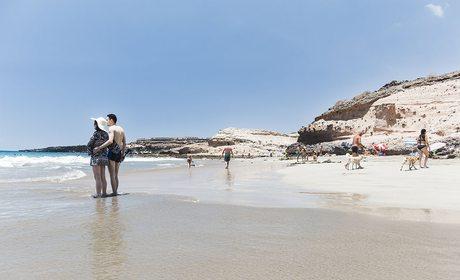 Playas escondidas de Tenerife (Canarias) | Guía Repsol