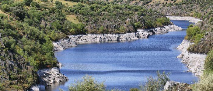 El río Tajo proporciona un gran caudal de agua para regar los campos de la comarca