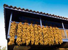 Hórreo asturiano