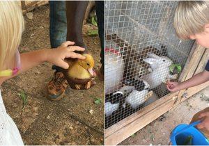 Can Musón (ibiza) granja ecológica para niños | Guía Repsol