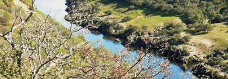 Alrededores del puente de Alcántara