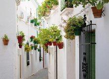Estampa andaluza en Priego de Córdoba
