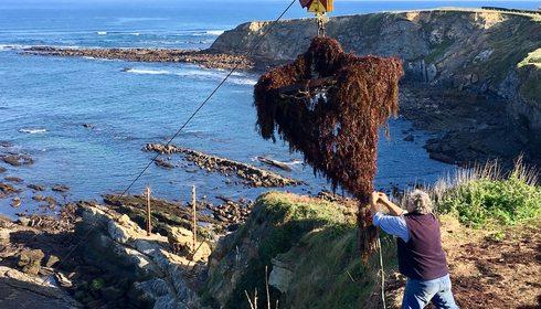 Recolectando el alga roja del mar Cantábrico   Guía Repsol