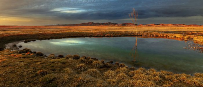 Laguna Gallocanta, un paraíso para las aves