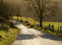 Camino de Santiago a su paso por Galicia