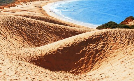 Playas de Cádiz: diez para flipar en verano | Guía Repsol