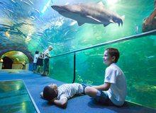 Donostia Aquarium