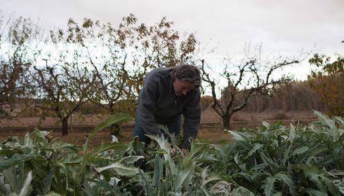 La huerta de Tudela (Navarra) en otoño e invierno | Guía Repsol