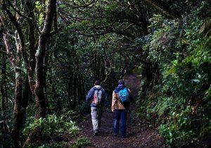 Ruta por los senderos de Anaga (Tenerife) | Guía Repsol