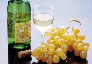 Ruta del Vino y la Tapa de Yecla