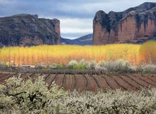 Valle de Iregua en primavera