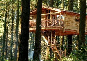 Hontza Cabin, 10 meters off the ground