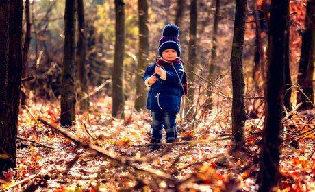 Bosques y niños