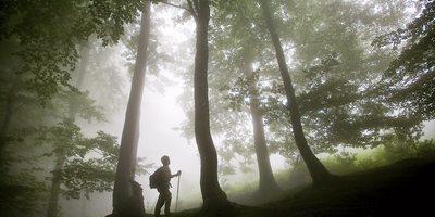 Parque Natural de la Sierra de Aizkorri