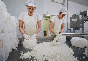 Quesos El Molino. Córdoba. Fotos: Javier Sierra