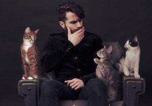 Catfriendly: Suara Store en Barcelona | Guía Repsol