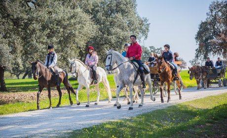Ruta a caballo en familia por La Carlota (Córdoba)   Guía Repsol