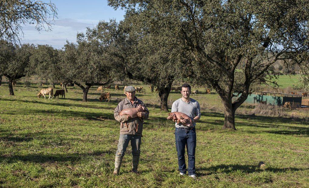 Joaquín y Manuel, Quercus