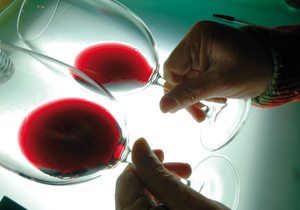 Enólogo catando vino
