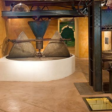 Museo de aceite de oliva cabecera