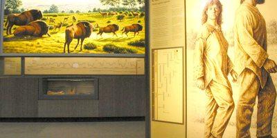 Interior del museo (Imagen: © MNCIA - P_Saura)