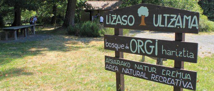 Entrada al bosque de Orgi