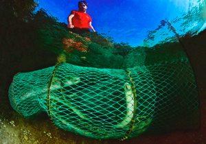 Pescar lamprea en Arbo (Pontevedra) | Guía Repsol