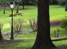 Jardines del pazo Soutomaior
