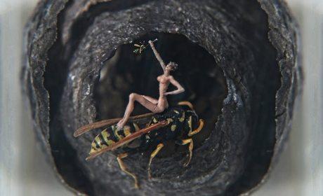 Mujer en un avispero. / Cedida por: Museo Microminiaturas
