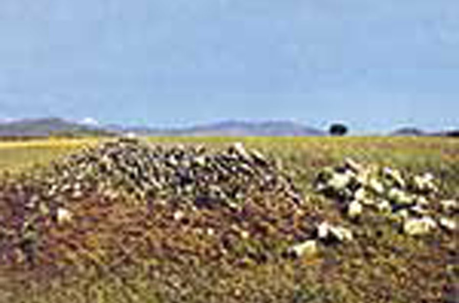 Yacimientos de Venturada