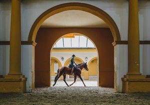 Real Escuale de Arte Ecuestre. Interior. Foto: Javier Sierra