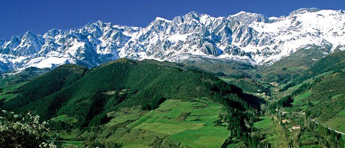 Campos verdes de Cantabria frente a los Picos de Europa nevados